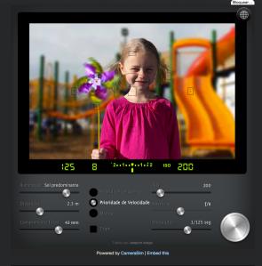 camera sim - simulador